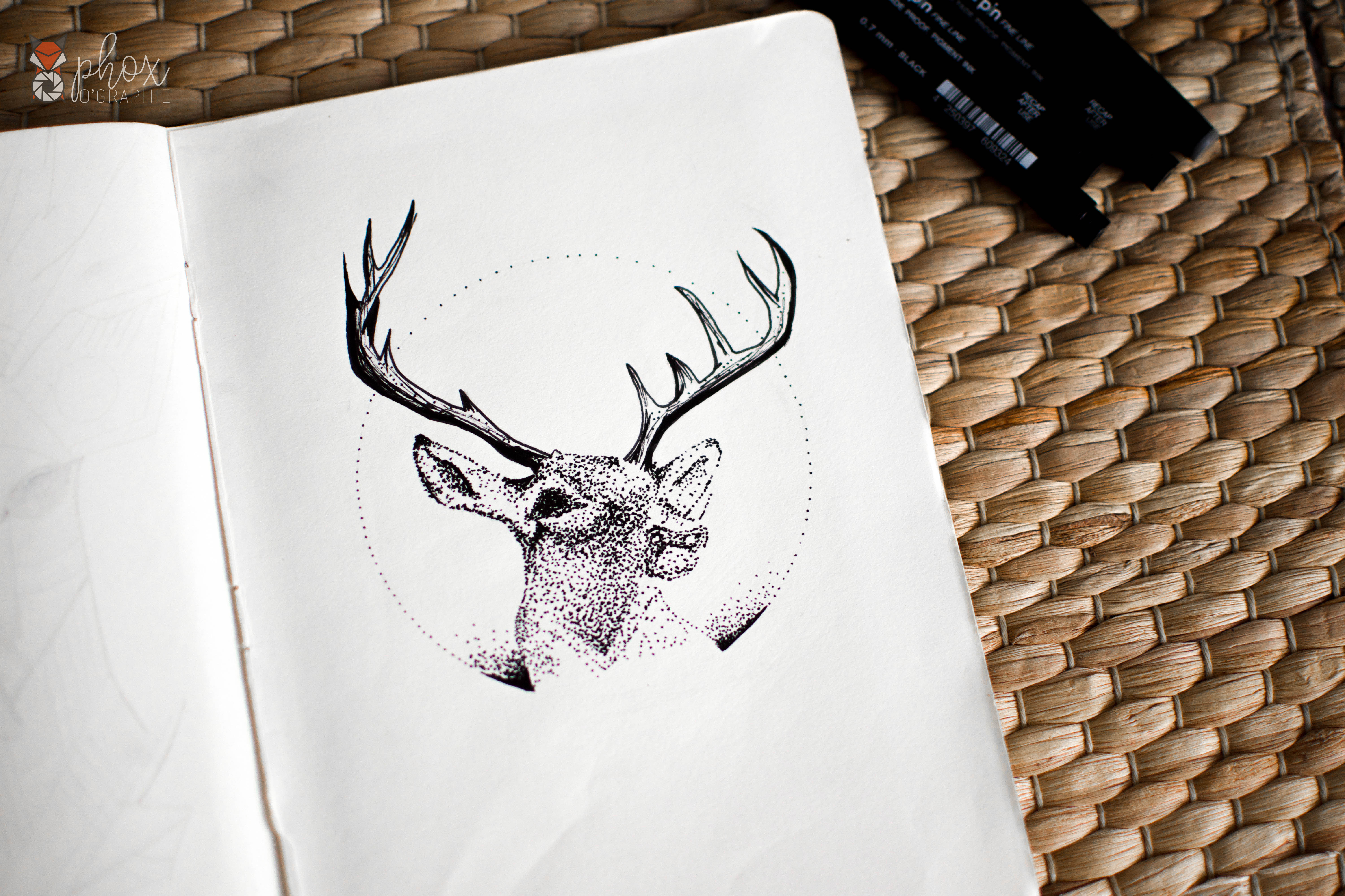 Dessin phoxographie reproduction cerf